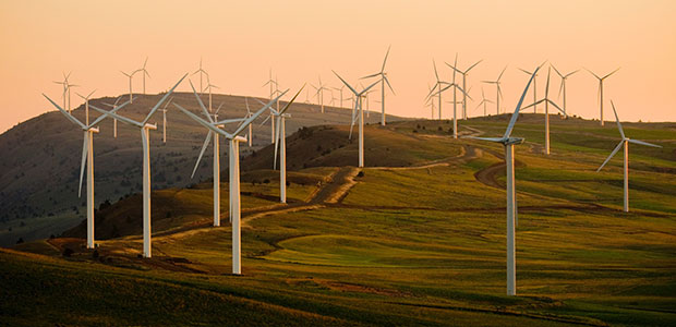 wind farms are the primary currency of the green power market
