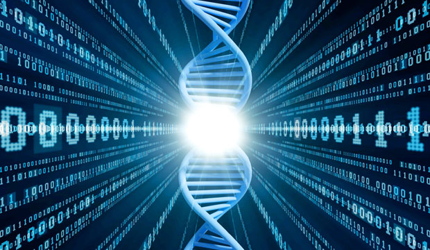 the process of dna printing transforms genetic code into computer code