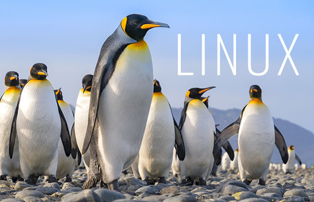 linuxfx 10 is the smoothest path to transition from windows to linux