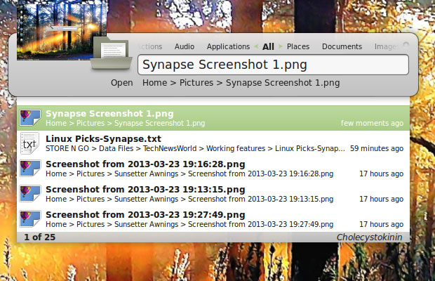 Synapse Search and Launch Utility